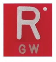 Polycarbonate Square R X-Ray Marker with 1-2 initials