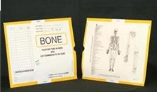 263336-250 - CI6125 Open End Category Insert Jackets - Bone with Yellow Border Ink Color - System A